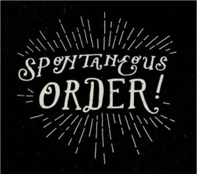 Anarquía en Acción: Orden Espontáneo