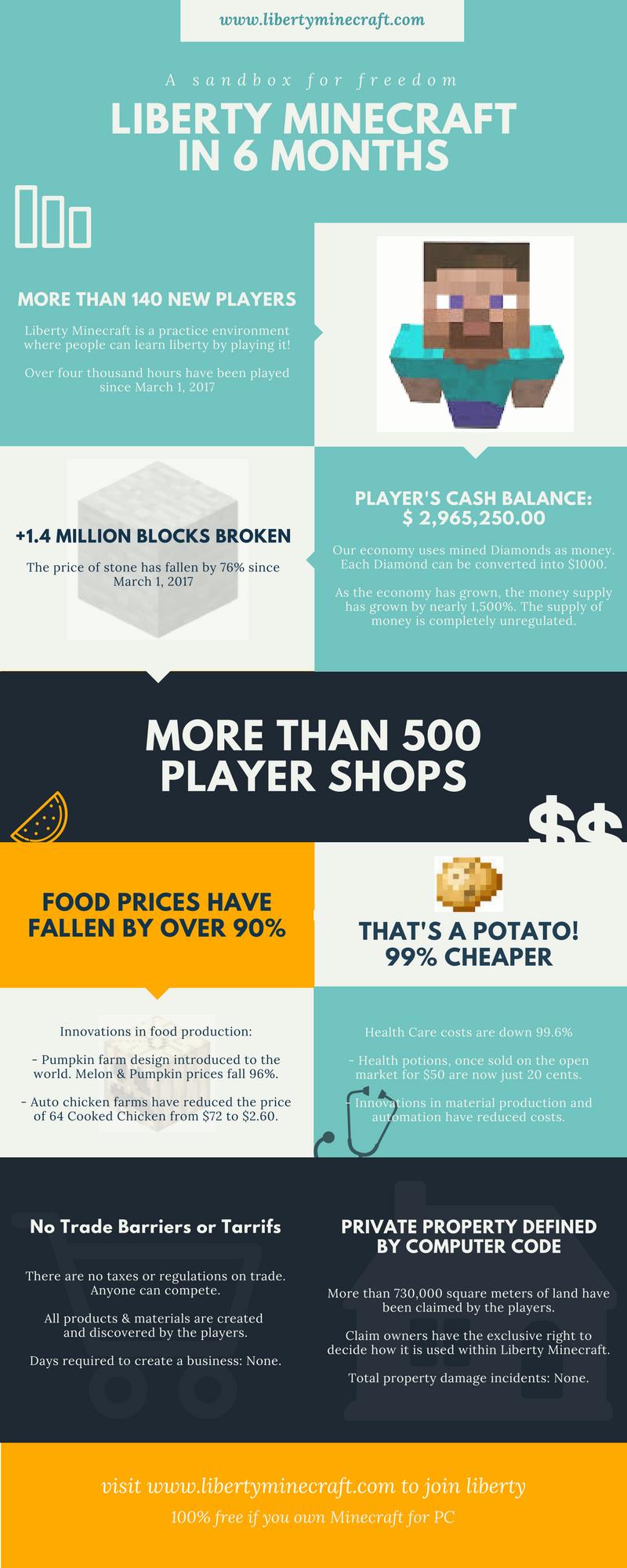 Liberty Minecraft Infographic
